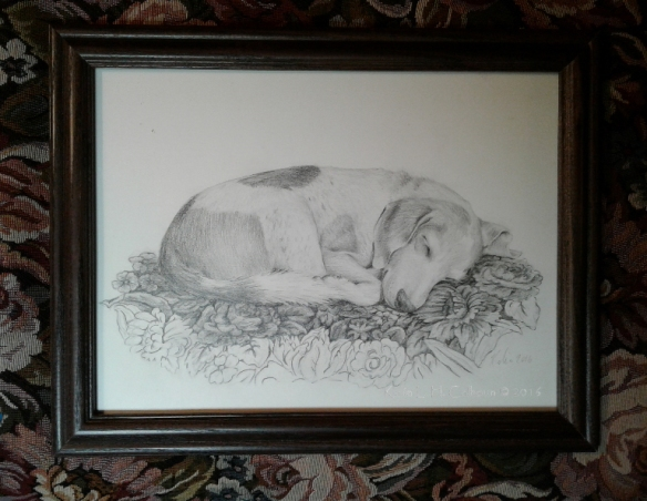 drawing-of-our-dog